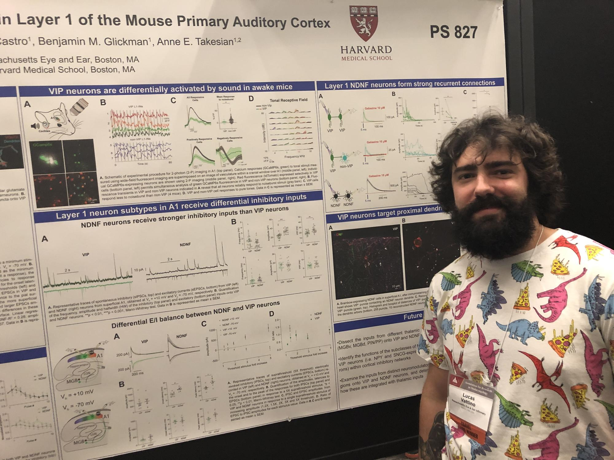 mass eye and ear postdoc at ARO meeting