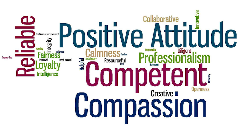 ASG Values Word Cloud