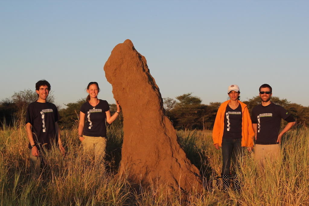 Termes group in Namibia 2012