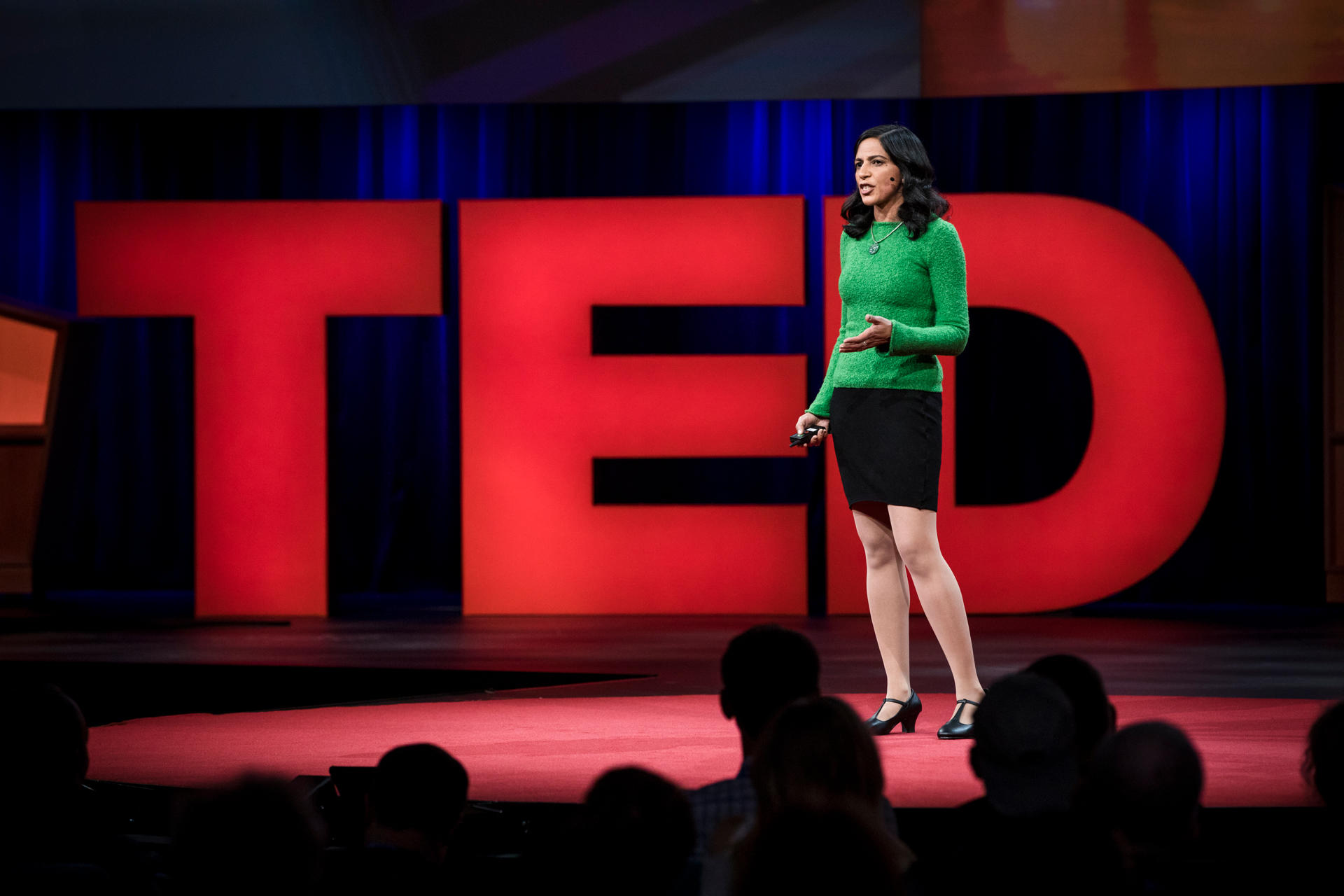 Radhika invited talk at TED 2017