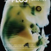 cover_article
