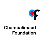 Six Harvard Medical School Researchers Win Prestigious $1.3M Champalimaud Vision Award
