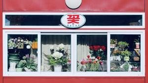 Flower shop in Pyongyang_photo by Esse Chen