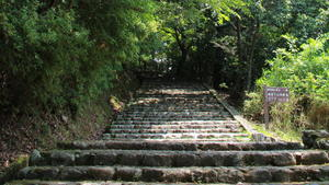 Summer in Japan_Stone steps under trees_photo by Jalem Towler