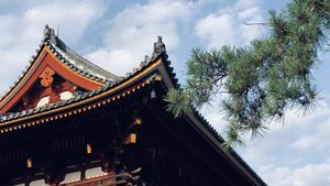Temple roof eaves in Japan_photo by Jason Wu