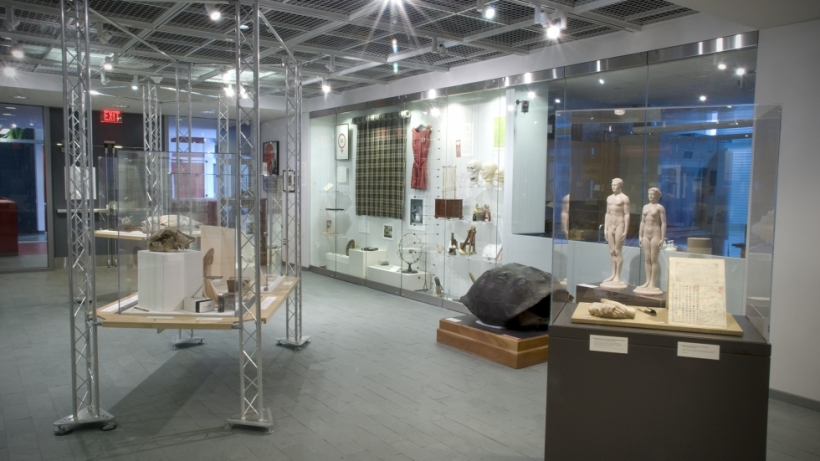 Special Exhibitions Gallery