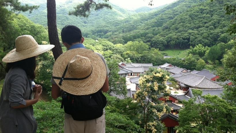 Image of students in HSS Korea Program on excursion overlooking a traditional Korean village in South Korea