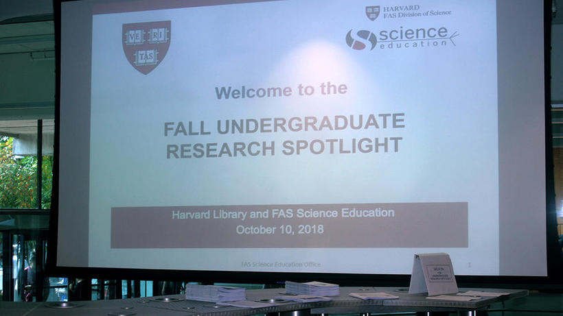 Undergraduate Research Spotlight