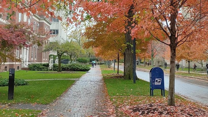 Harvard campus sidewalk in Fall_photo by Sejan Choi