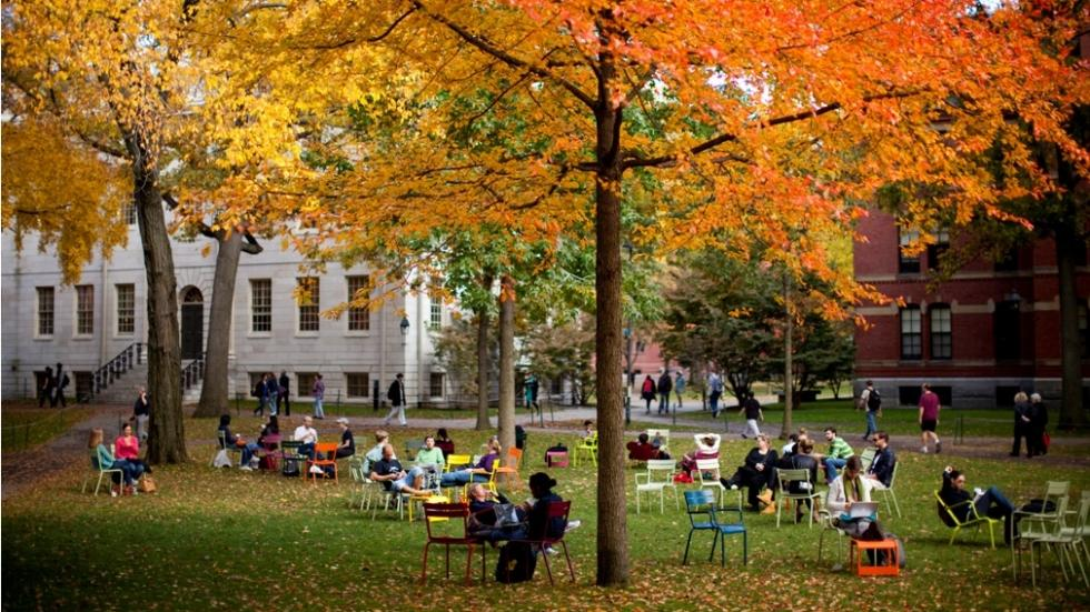 People sitting in Harvard Yard