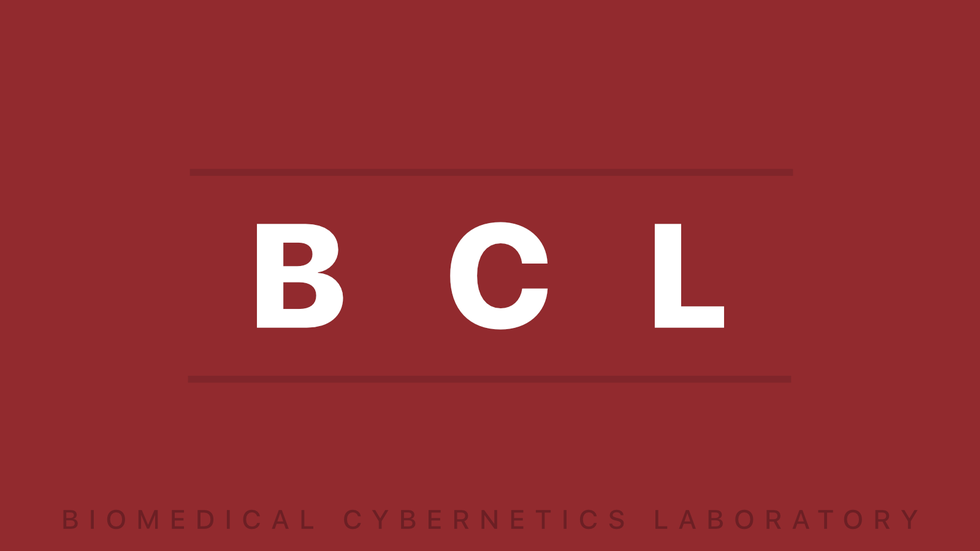 Homepage Image for Biomedical Cybernetics Laboratory