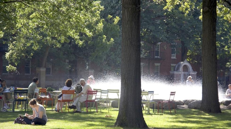 Commonspaces, Harvard Yard