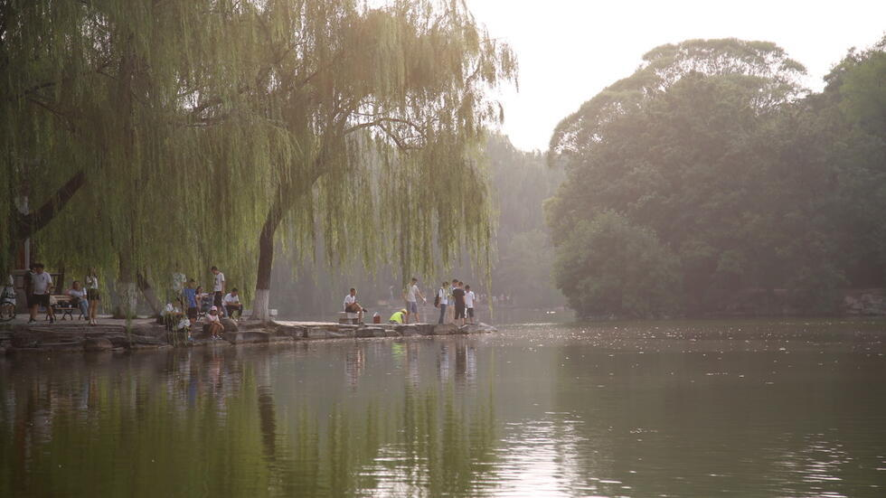 Seen from across the shining water of a large pond, a smattering of people stand on a small outcropping of land under a weeping willow tree, talking and enjoying the view.