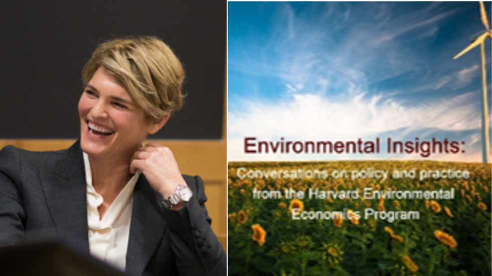 A New Day for Climate Policy: Harvard Law School Professor Jody Freeman Analyzes Biden Administration Actions: Episode of Environmental Insights Podcast