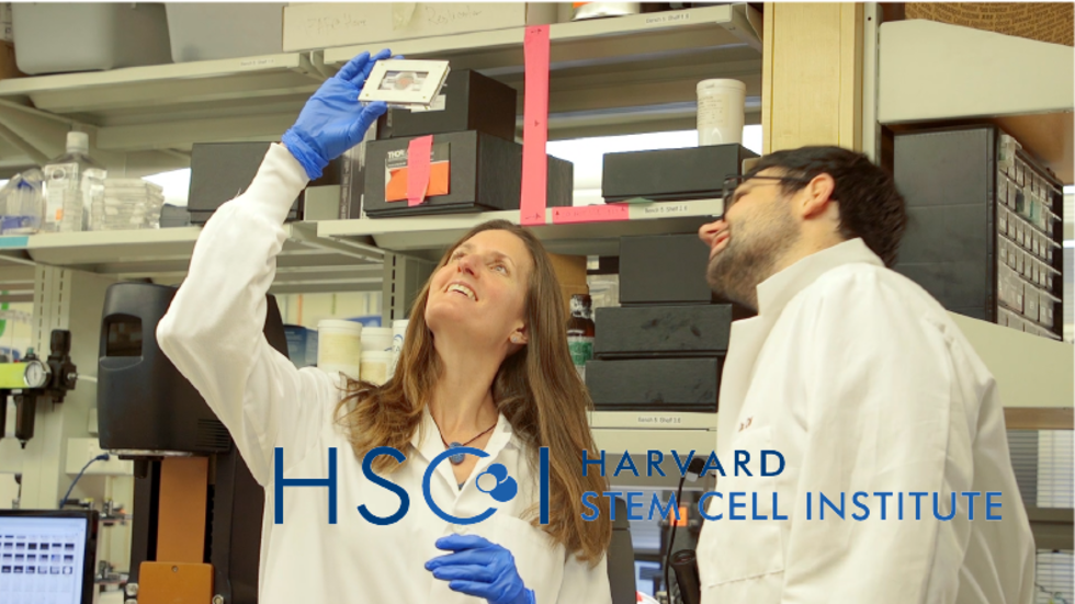 HSCI's year in review