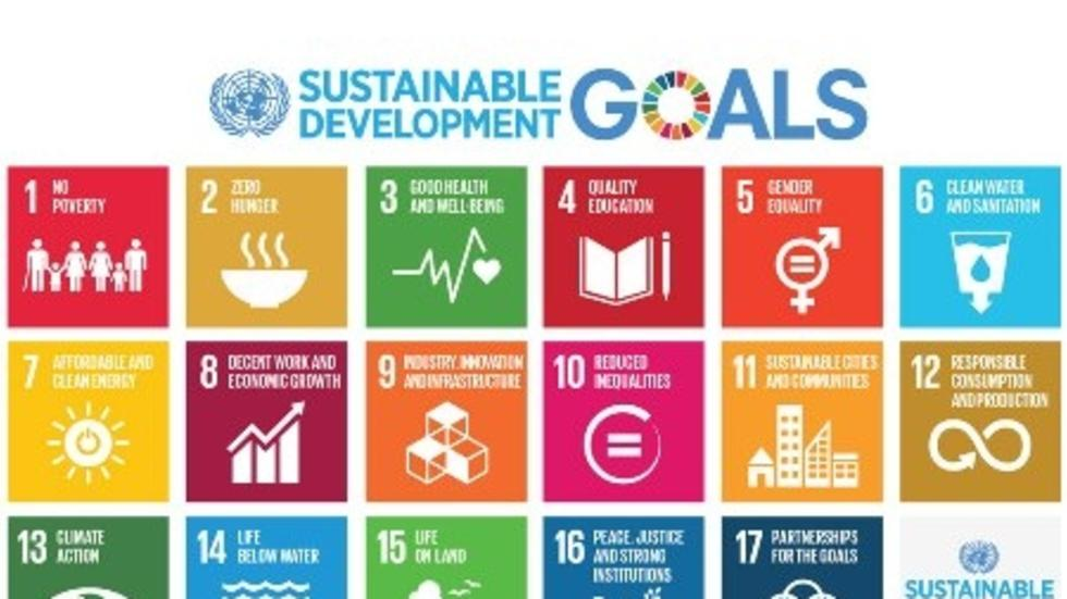 UN SDG table of goals