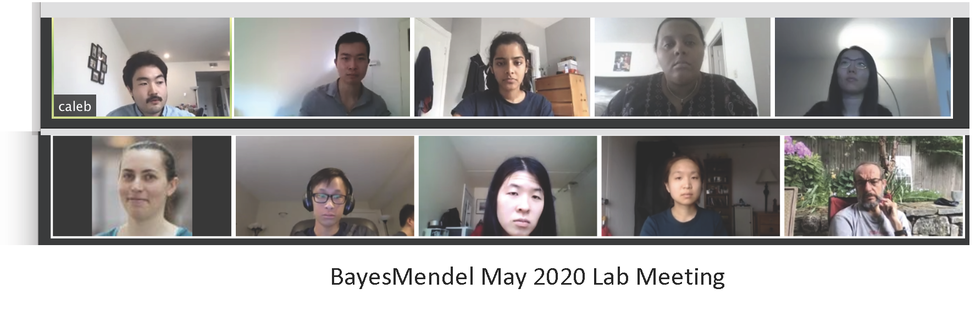 labmay2020