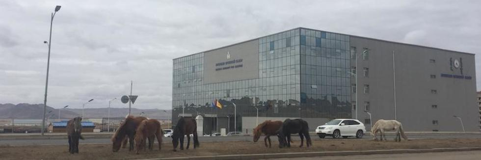 Horses and building in Mongolia by A-S Pratte