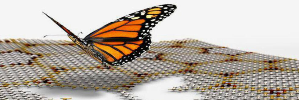 Hofstadter's butterfly in graphene on boron nitride