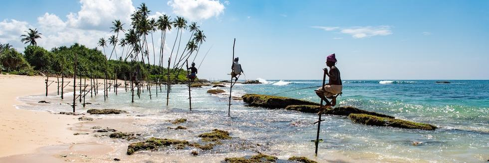 Stilt fishing in Sri Lanka