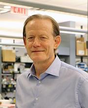 Albert Edge in his lab in 2019