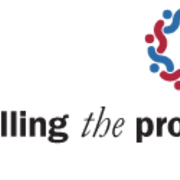 Fulfilling the Promise of Diversity Logo